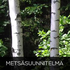 Metsäsuunnitelma, jatkuva kasvatus, riistanhoito, metsäsijoittaminen, luonnonsuojelu talousmetsissä
